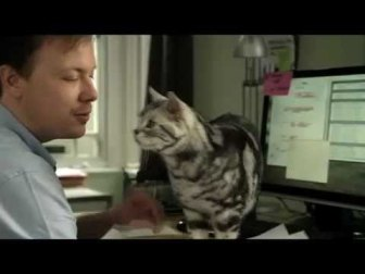 Whiskas commercial
